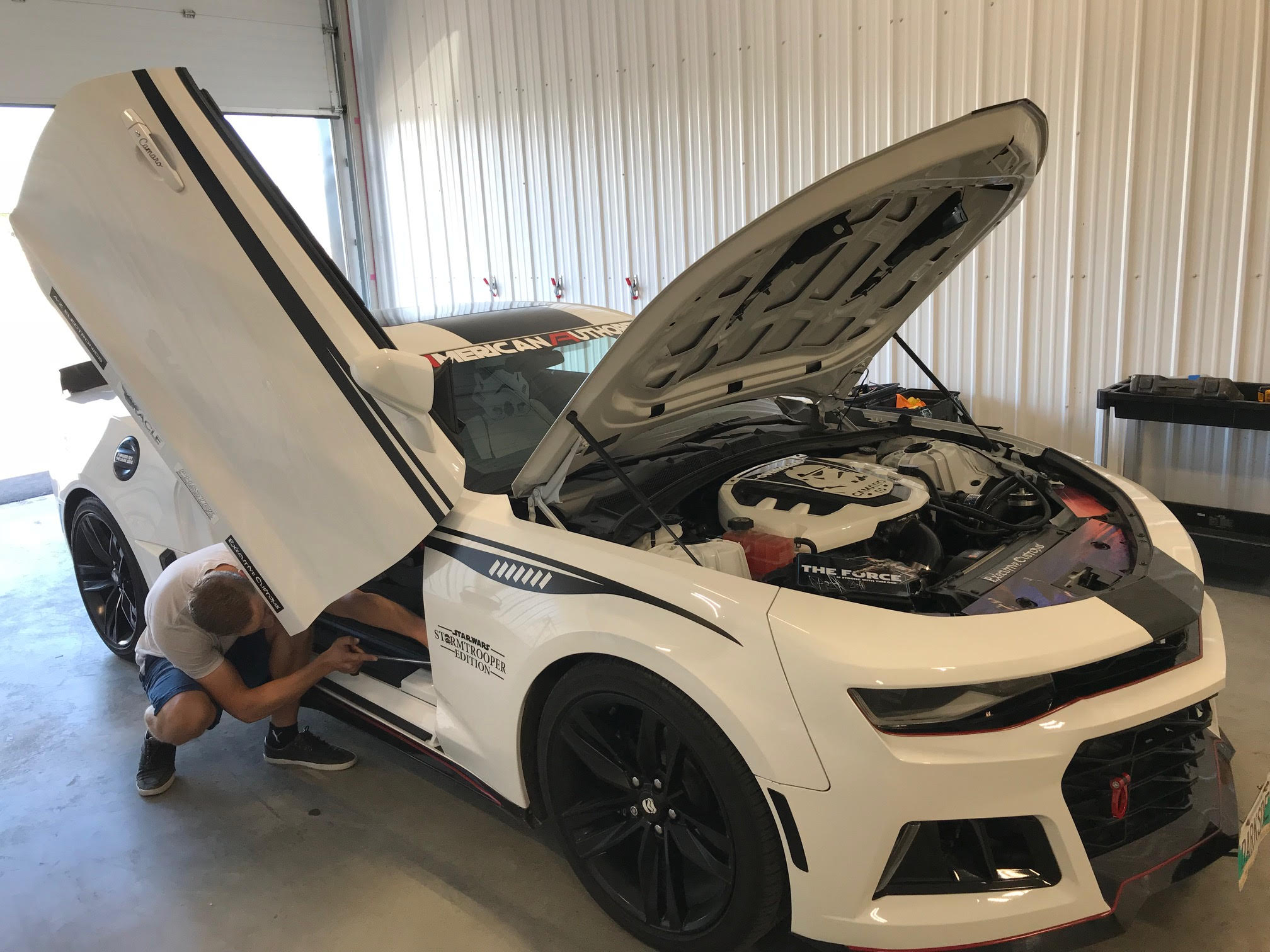 Dent Dynasty - Paintless Dent Removal And Repair - Winnipeg